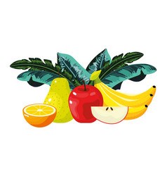 tropical fruits cartoon vector image