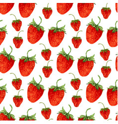 watercolor seamless pattern with red strawberries vector image