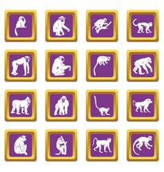 monkey types icons set purple vector image vector image