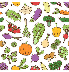 colorful fresh organic vegetables in line art vector image