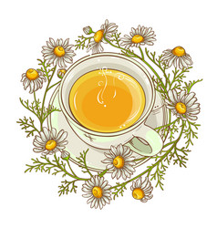 Cup of chamomile tea vector
