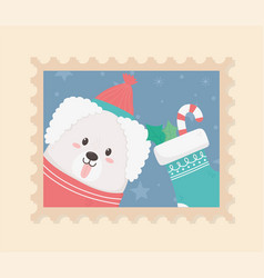 cute dog celebration happy christmas stamp vector image