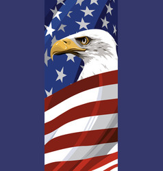 National symbol of the usa vector