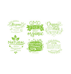 natural organic fresh food labels set gmo free vector image