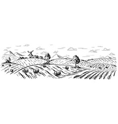 rural landscape in graphical style vector image