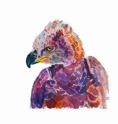 watercolor of african crowned eagle on white vector image
