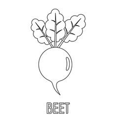 beet icon outline style vector image vector image