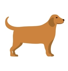 cute dog isolated icon design vector image vector image