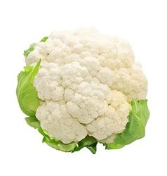 Cauliflower isolated on white background vector image vector image