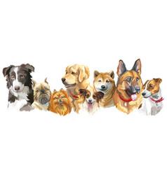 dog breeds set vector image