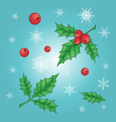 christmas and new year holly berry icon collection vector image