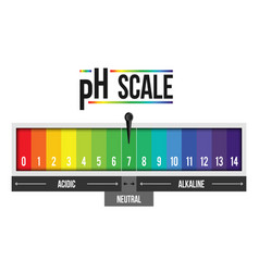 creative of ph scale value vector image