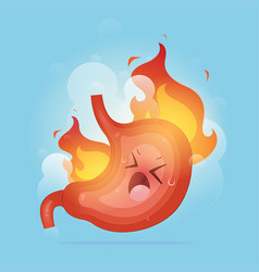 From acid reflux or heartburn vector