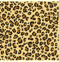 seamless leopard texture pattern vector image