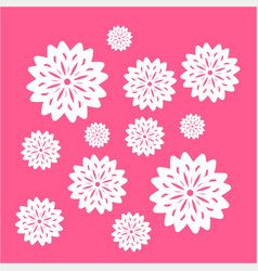 simple white flower in pink background ornament vector image