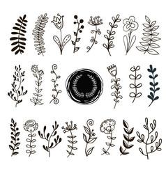 plants doodle vector image vector image
