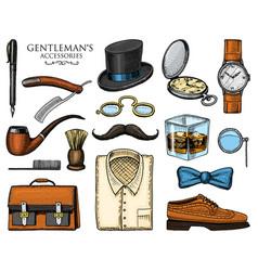 gentleman accessories hipster or businessman vector image