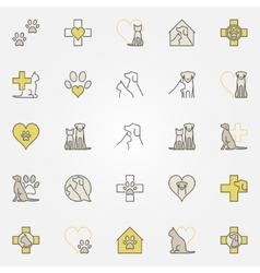 Veterinary medicine colored icons vector image vector image