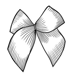 Bow with ribbon vector