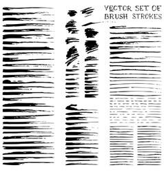 Ink brush flourishes vector