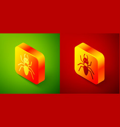 Isometric ant icon isolated on green and red vector