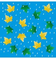 Rain and falling leaves vector image