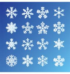 snowflakes blue vector image vector image