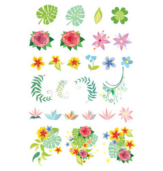decorative vegetation vector image