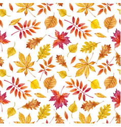 watercolor autumn leaves pattern vector image