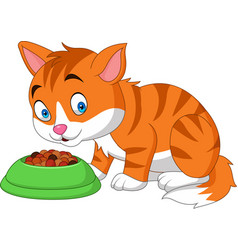 Cartoon funny cat eating vector