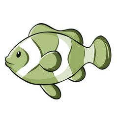 Green fish on white background vector
