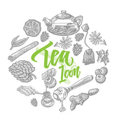 hand drawn tea elements set vector image