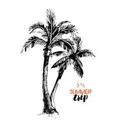 hand drawn vintage travel vacation banner sketch vector image