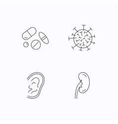 Medical pills virus and ear icons vector image