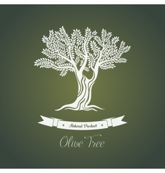 Olive tree logo with branches vector image