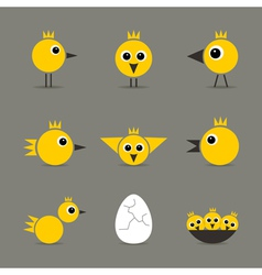 Yellow baby bird vector image vector image