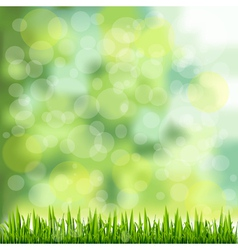 Grass Border On Natural Green Background vector image