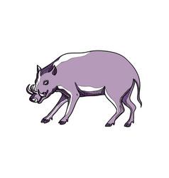 Babirusa or deer pig drawing vector