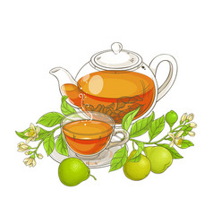 bergamot tea vector image