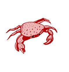 crab stylized drawing vector image