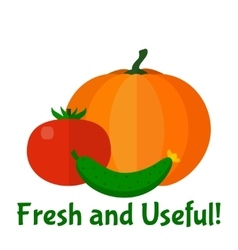 Fresh vegetables background vector
