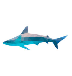 polygon shark vector image