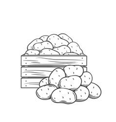 Potato tubers monochrome outline vector