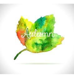 Watercolor leaf design element vector image vector image