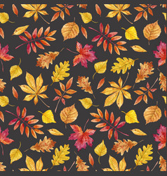 watercolor autumn leaves pattern vector image vector image