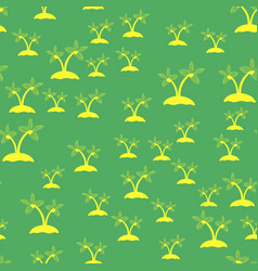Colored palm seamless pattern vector