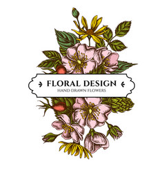 Floral bouquet design with colored dog rose hop vector