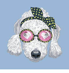 hipster dog Bedlington Terrier vector image