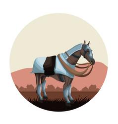 warrior medieval horse vector image