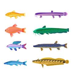 Aquarium tropical fish set vector